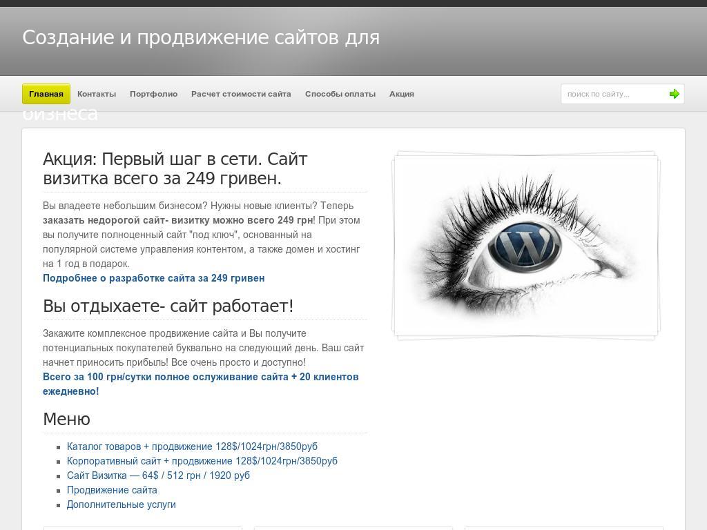 Разработка и продвижение веб сайтов
